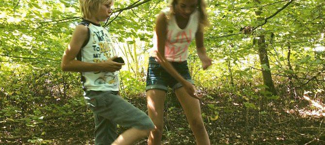Speelweide Voorsterbos
