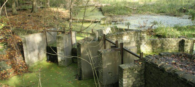 Excursie: Waterwerkmodellen in het Waterloopbos